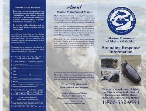 back of brochure